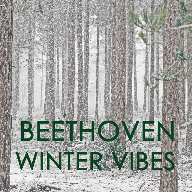 Beethoven - Winter Vibes