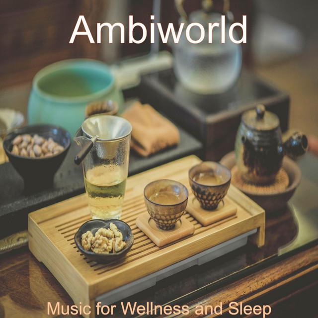 Music for Wellness and Sleep