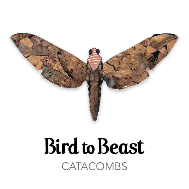 BIRD TO BEAST