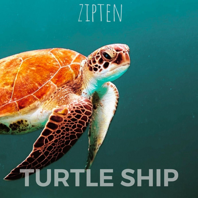Turtle Ship Image