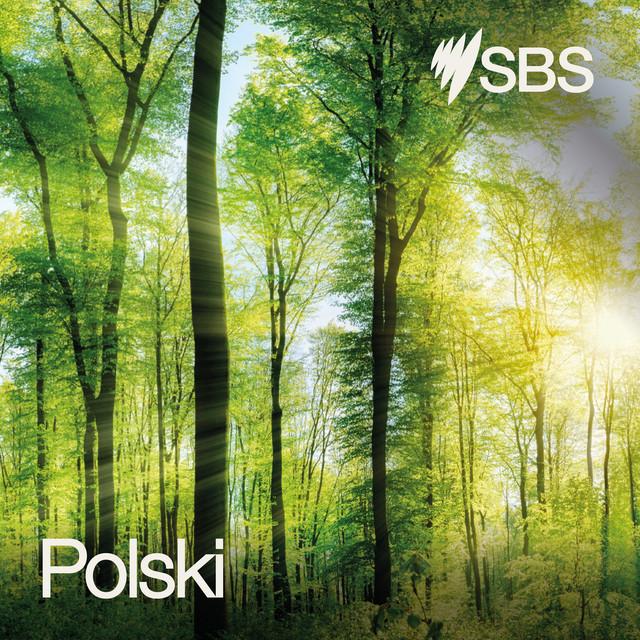 SBS Language   SBS News in Russian - 10.09