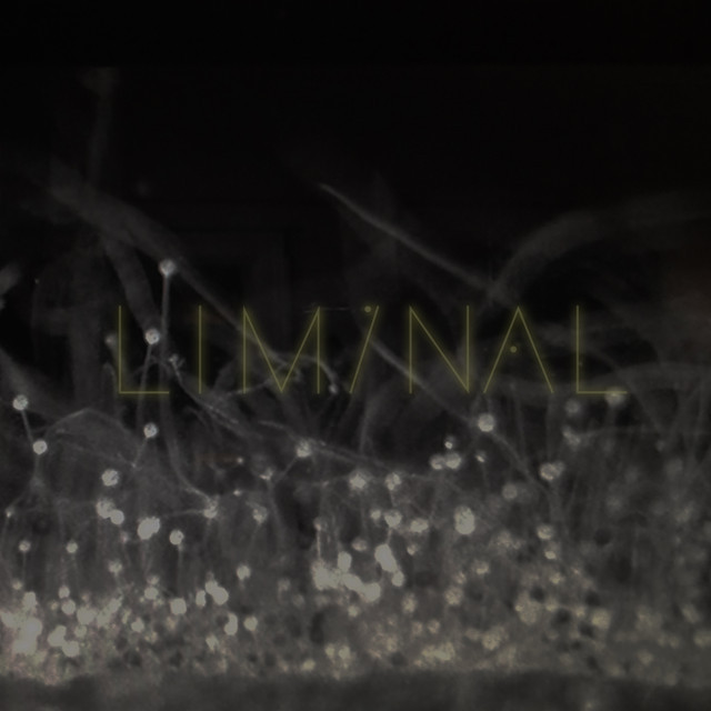 Liminal - an endless ambient mixtape curated by Jónsi, Alex Somers & Paul Corley