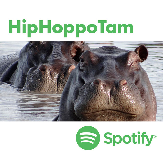 HipHoppoTam by Paolo Tamoni. New wave hiphop.