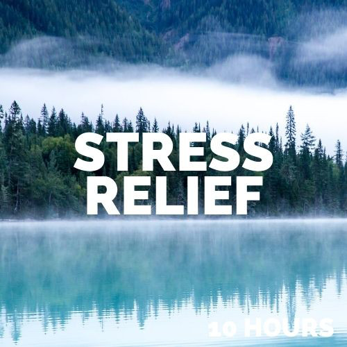 Stress Relief Music (10 Hours)
