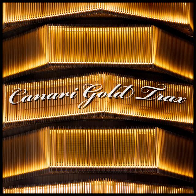 Canari Gold Trax