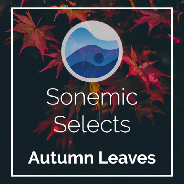 Autumn Leaves   Sonemic Selects
