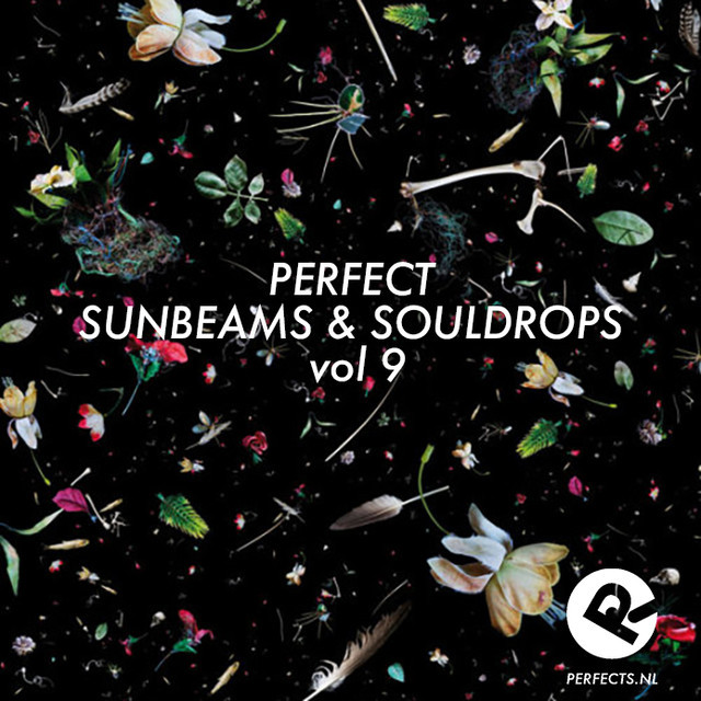 Perfect Sunbeams & Souldrops Vol. 9 (according to Wilbert Leering)
