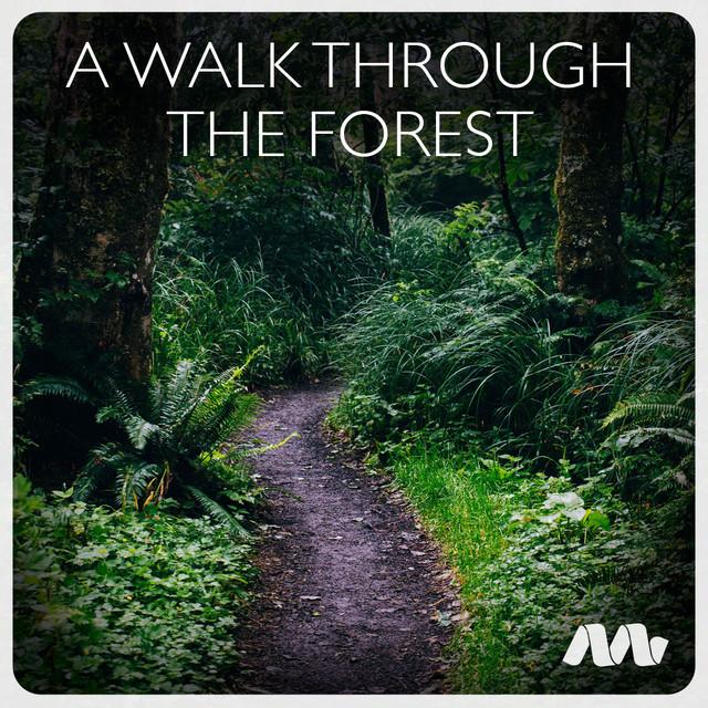 A Walk Through the Forest (Instrumental / Meditation / Ambient)