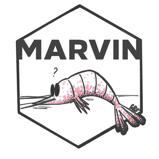 Marvin Dice | Febbraio 2020