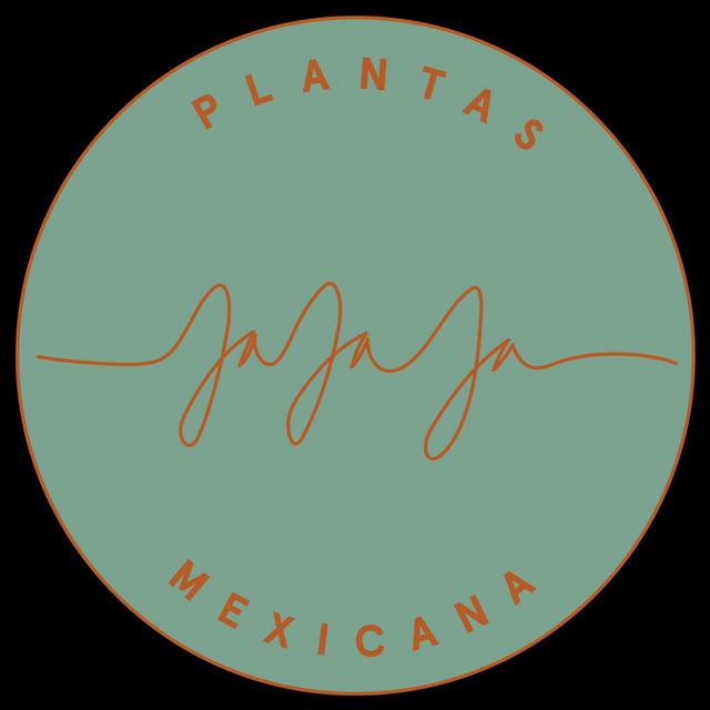 Jajaja Fiesta Mix