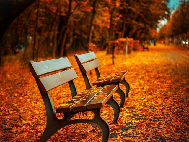 Canciones de otoño