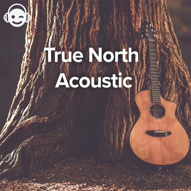 True North Acoustic