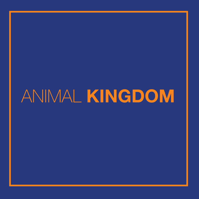 The rise of the Animal Kingdom