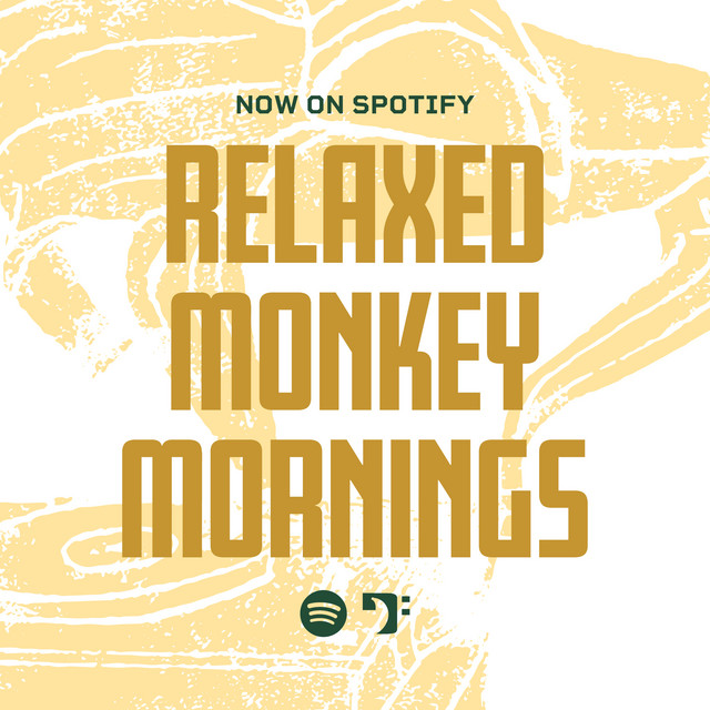Relaxed Monkey Mornings