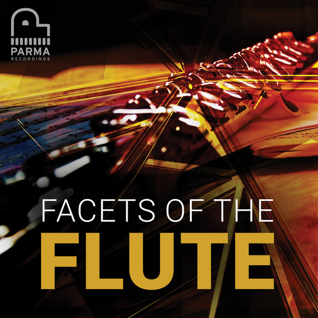 Facets of the Flute