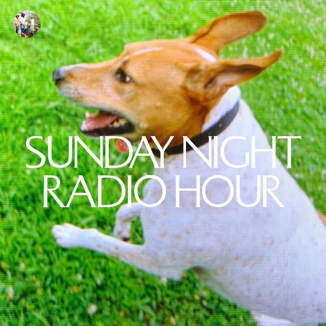 Deerhunter Sunday Night Radio Hour