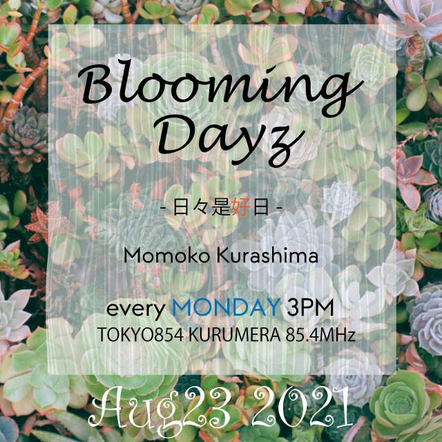 Blooming Days - 日々是好日[20210823]  #TOKYO854 #倉嶋桃子
