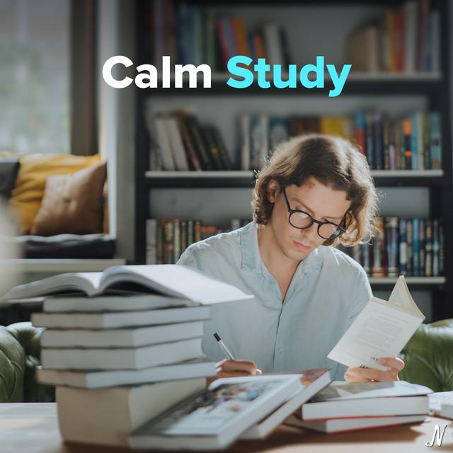 Calm Study   Instrumentals for Focus, Work, Reading