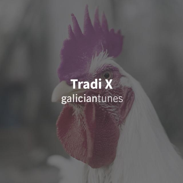 Tradi X