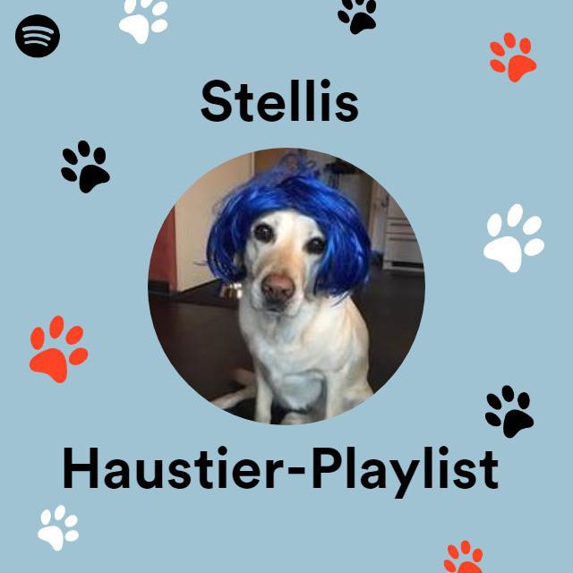 Stellis Haustier-Playlist