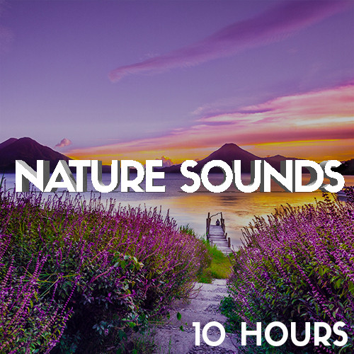 Nature Sounds (10 Hours) Relaxing Sounds, Relaxed Nature, Soothing Sounds, Free Nature Noises