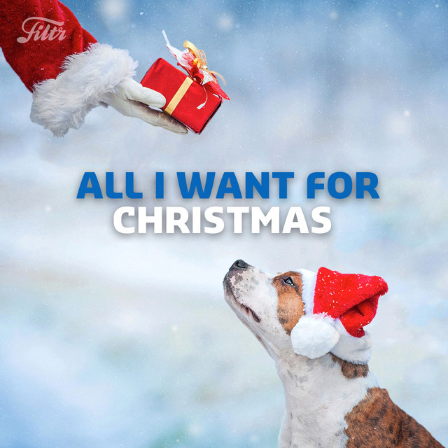 All I Want for Christmas Is You + More Christmas Songs