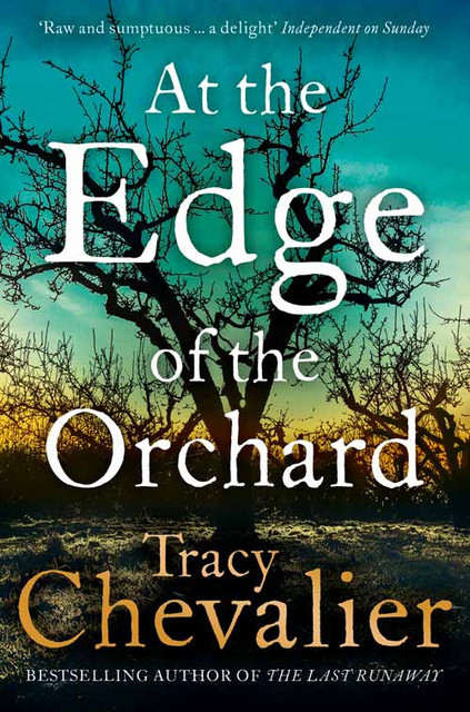 At The Edge of the Orchard - novel