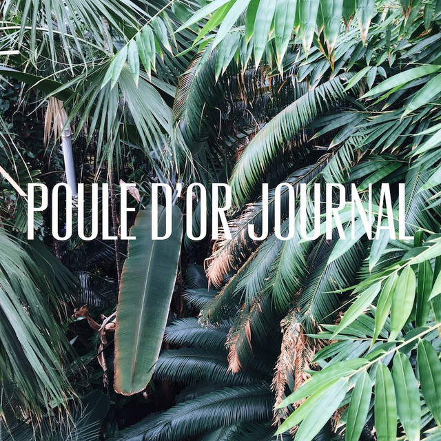 Poule d'Or Journal – current musings at the headquarters