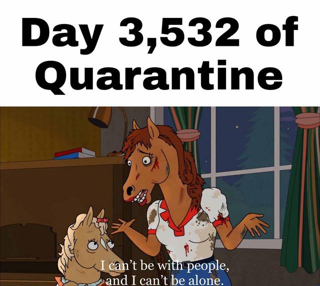 MiFI | 2020 :: Life in Quarantine