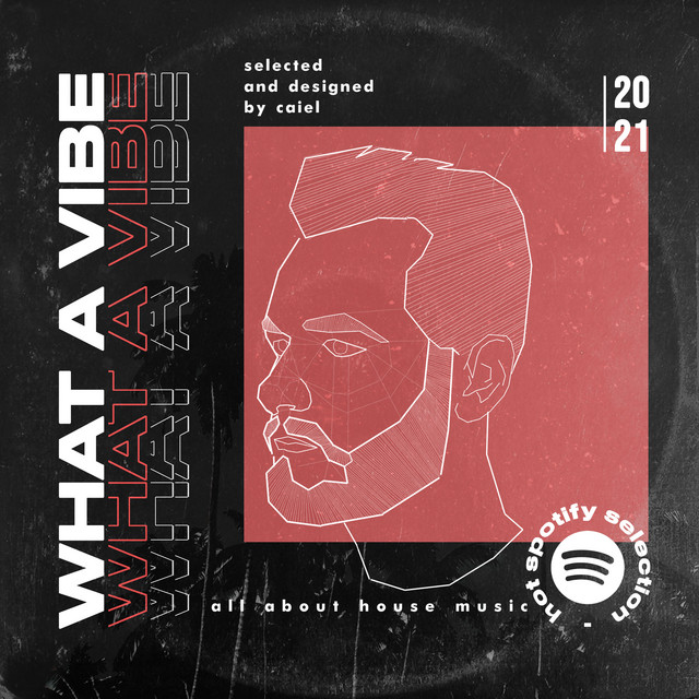 What a Vibe _ Selected by CAIEL