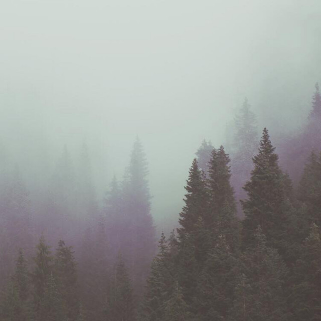 Postpunk | Cold