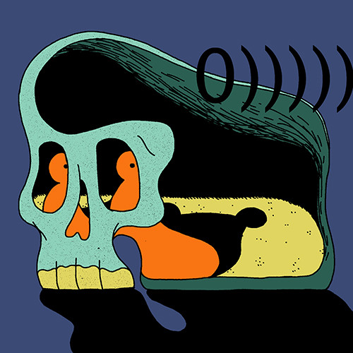 Inward Visual Projection of Aural Vibrations on the Back Wall of the Cave of the Skull