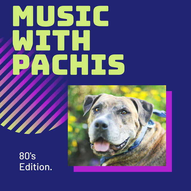 Music with Pachis: 80's Edition.
