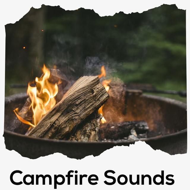 Campfire Sounds - Beach Bonfire Sounds - Calming Fire Noises