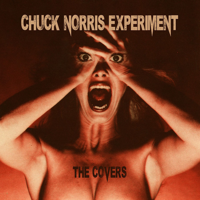 Chuck Norris Experiment - The Covers Playlist