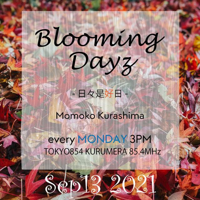 Blooming Days - 日々是好日[20210913] #TOKYO854 #倉嶋桃子