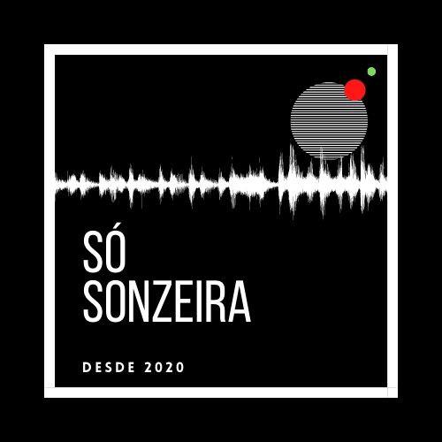 S脫 SONZEIRA 2021 馃敟 + VINTAGE CULTURE + ALOK + DUBDOGZ + LAN脟AMENTOS 2021 - S脫 TRACK BOA @oaleguedes