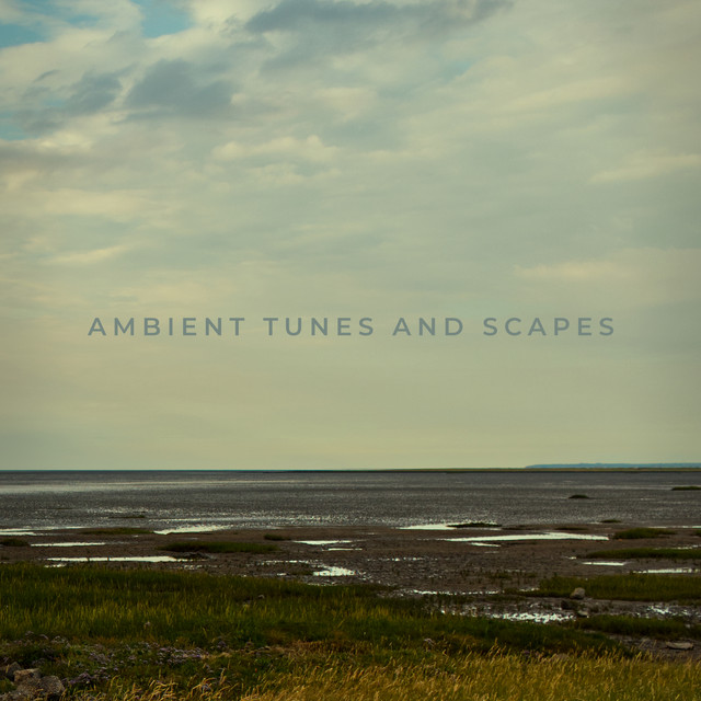 ambient tunes and scapes
