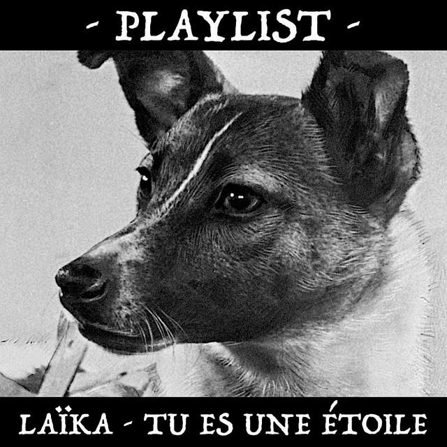 Krautrock, IDM, EDM & Soundtrack - Laïka, tu es une étoile