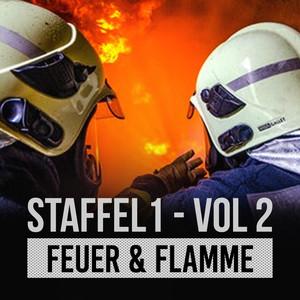 Bad Cop 1x03 Feuer Flamme