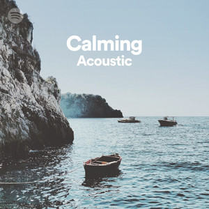 Calming Acoustic on Spotify