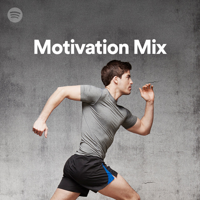 Motivation Mix