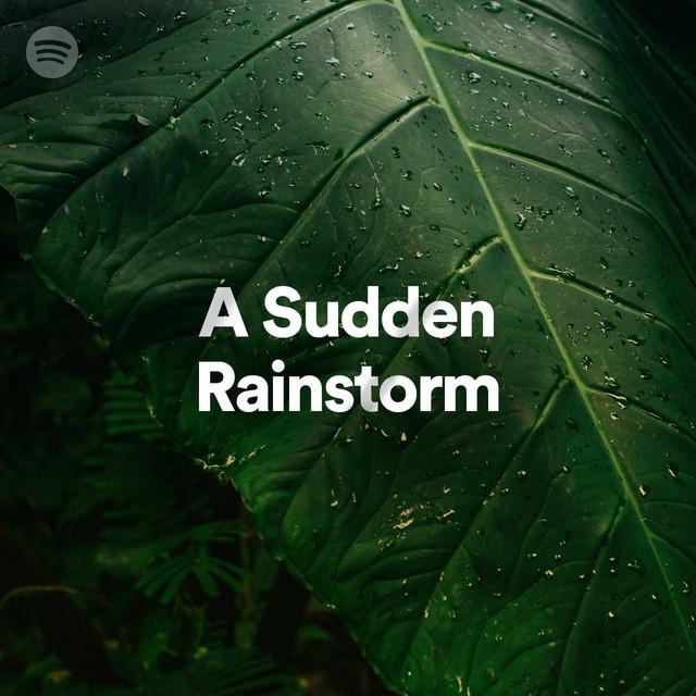 A Sudden Rainstorm