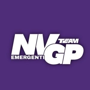 Nvgp.team