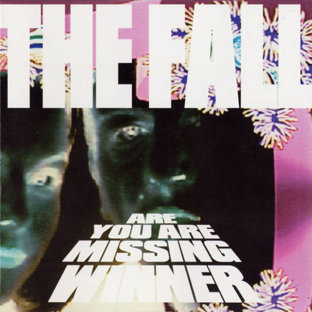 The Fall Are You Are Missing Winner album cover