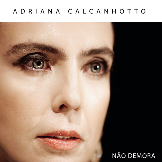 Adriana Calcanhotto Não Demora album cover