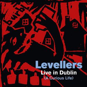 A Curious Life (Live in Dublin) (The Acoustic Album) album