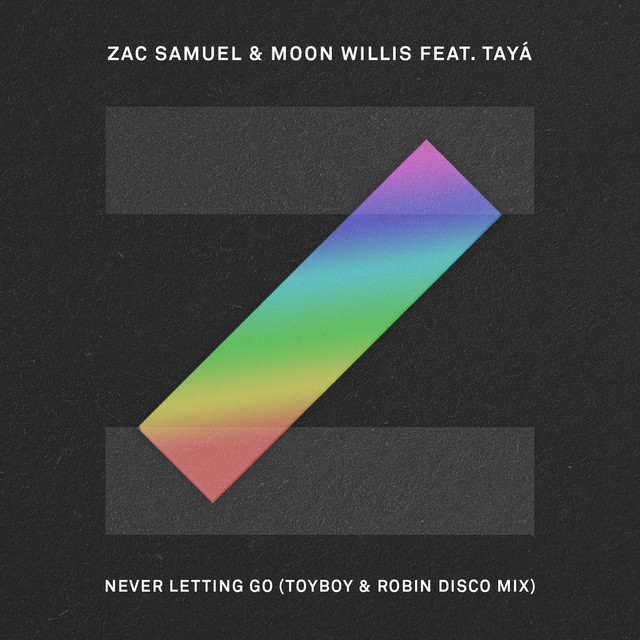 Never Letting Go (Toyboy & Robin Disco Mix)