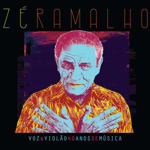 Voz & Violão - 40 Anos de Música album