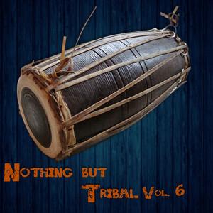 Nothing but Tribal, Vol. 6 album